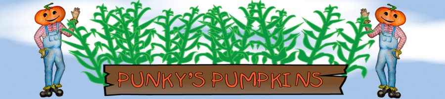 punkys pumpkin patch santa rosa california banner